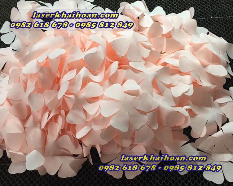 Cắt cánh hoa vải chất lượng cao